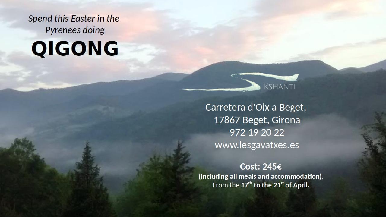 Poster for Qigong retreat